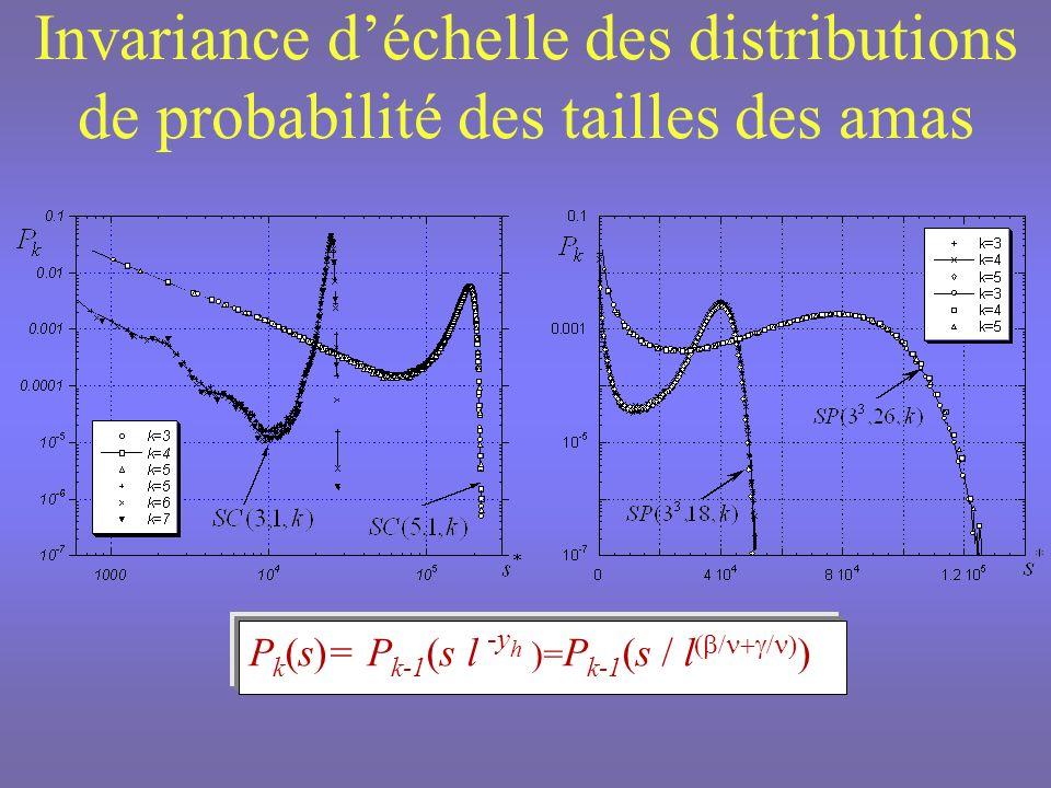 Invariance d'échelle des distributions de probabilité des tailles des amas