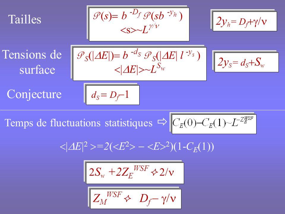Dimension fractale des clusters de Wolff