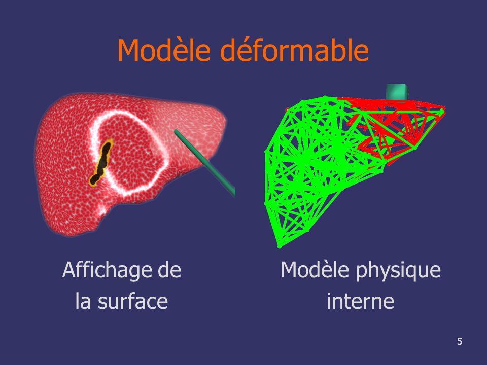 Modèle déformable Affichage de la surface Modèle physique interne