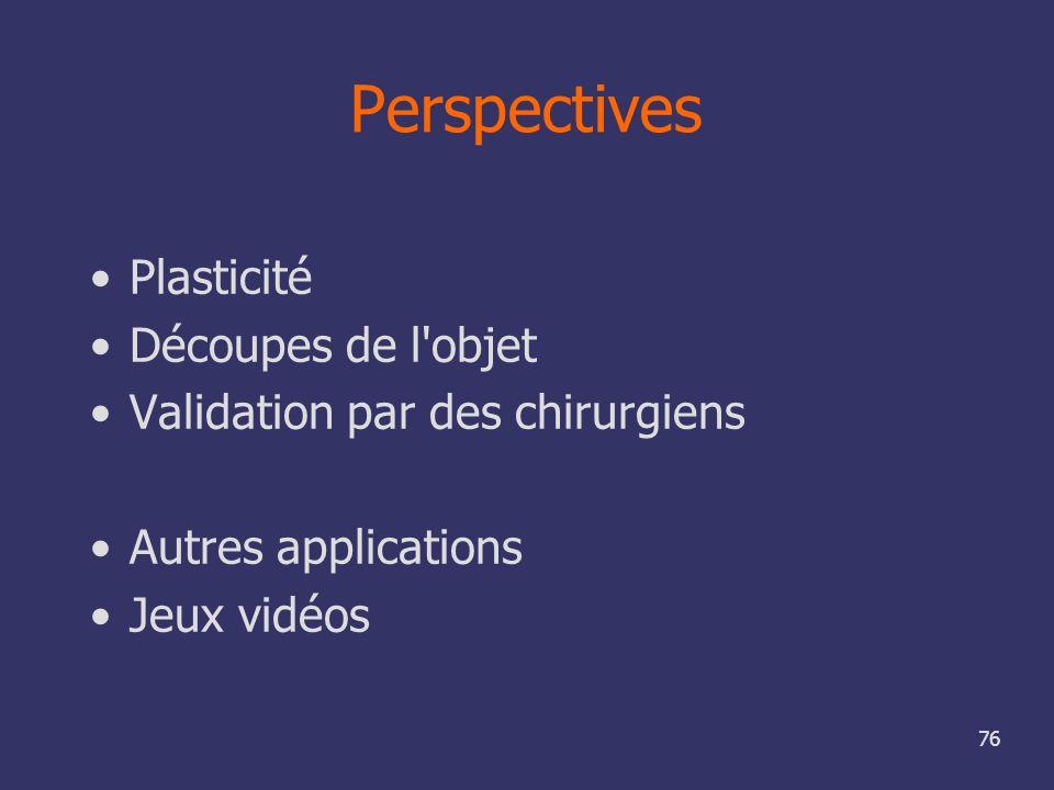 Perspectives Plasticité Découpes de l objet