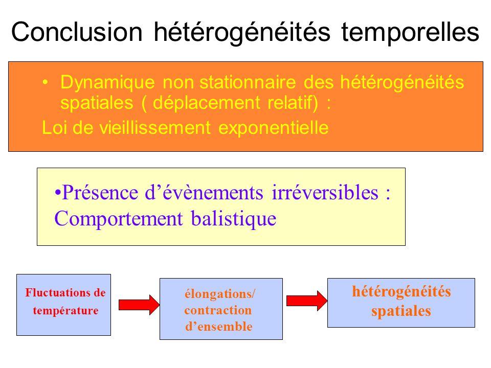 Conclusion hétérogénéités temporelles