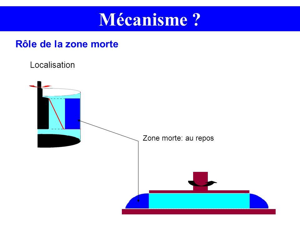 Mécanisme Rôle de la zone morte Localisation Zone morte: au repos