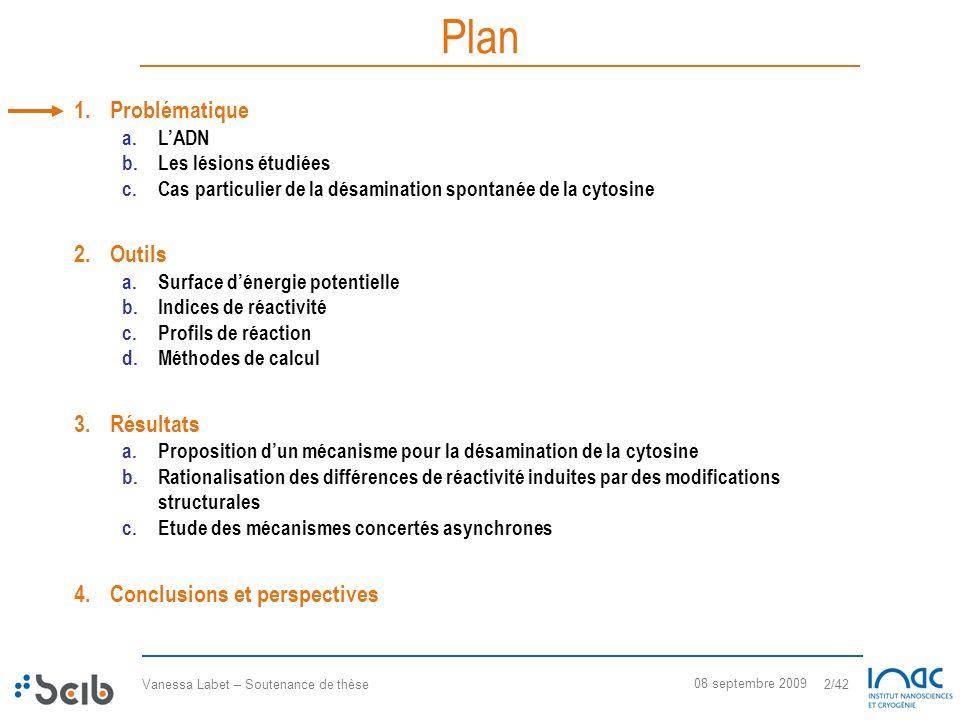 Plan Problématique Outils Résultats Conclusions et perspectives L'ADN