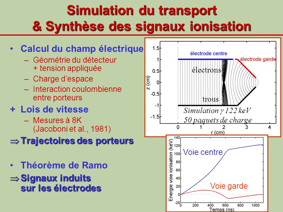 Simulation du transport & Synthèse des signaux ionisation