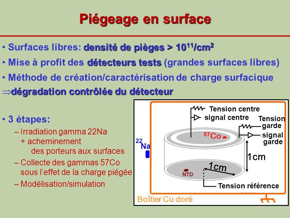 Piégeage en surface Surfaces libres: densité de pièges > 1011/cm2