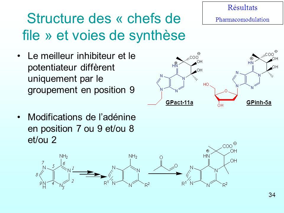 Structure des « chefs de file » et voies de synthèse