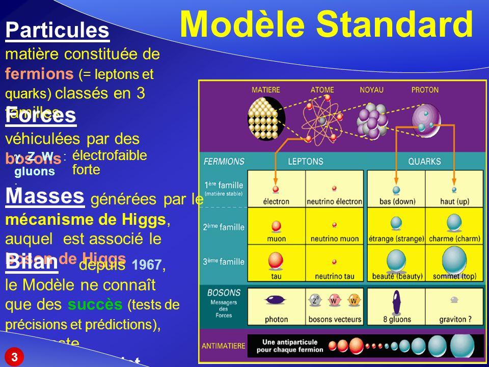 Modèle Standard Particules Forces Masses Bilan