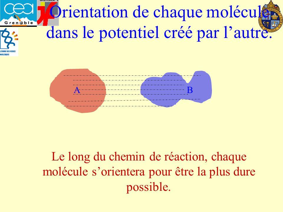 Orientation de chaque molécule dans le potentiel créé par l'autre.