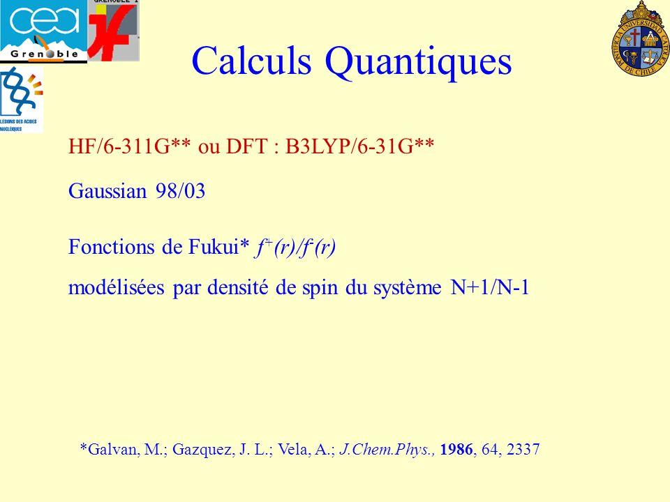 Calculs Quantiques HF/6-311G** ou DFT : B3LYP/6-31G** Gaussian 98/03