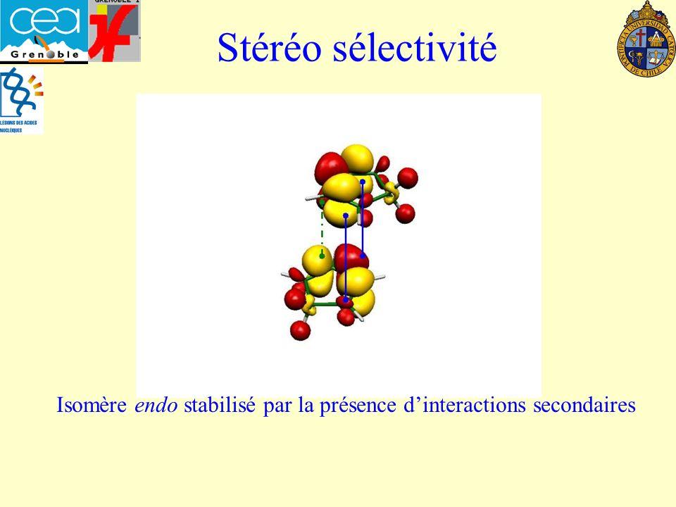 Isomère endo stabilisé par la présence d'interactions secondaires