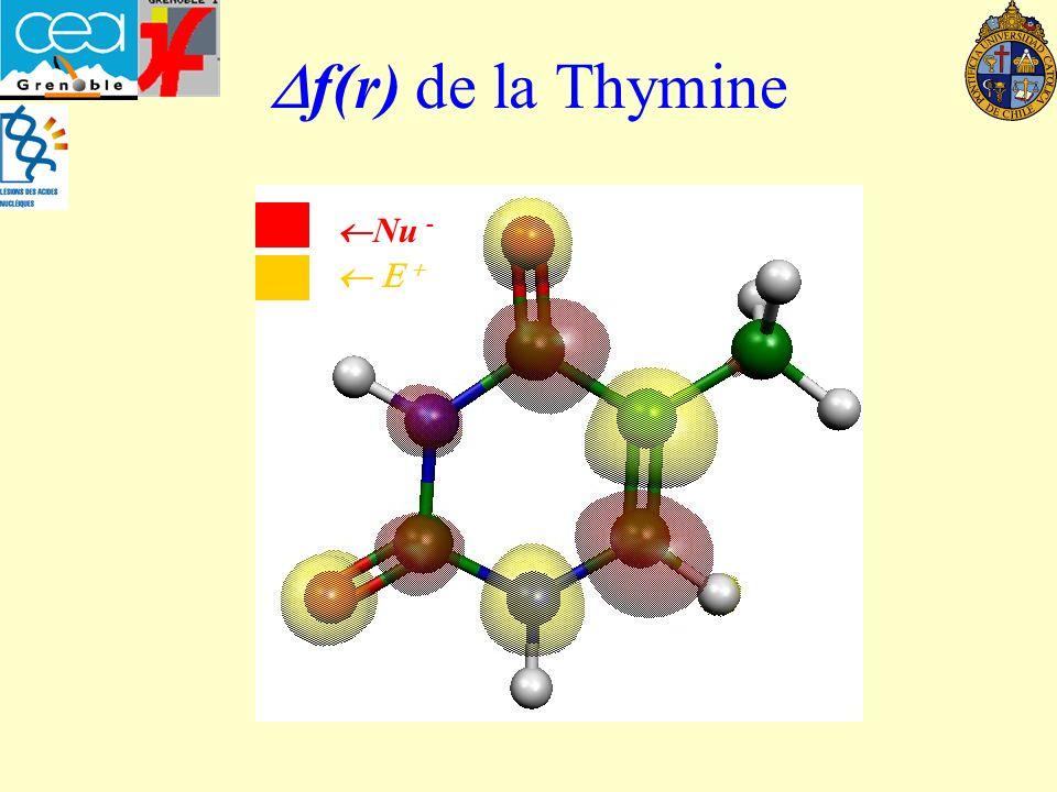 Df(r) de la Thymine Nu -  E +