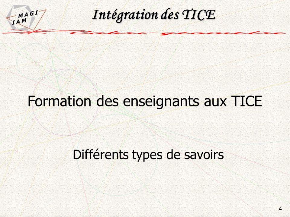 Intégration des TICE Formation des enseignants aux TICE