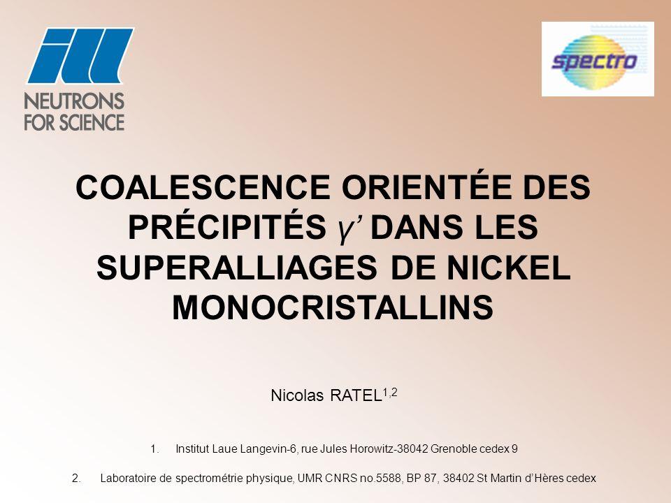 Institut Laue Langevin-6, rue Jules Horowitz-38042 Grenoble cedex 9
