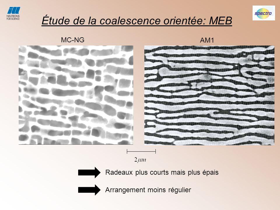 Étude de la coalescence orientée: MEB