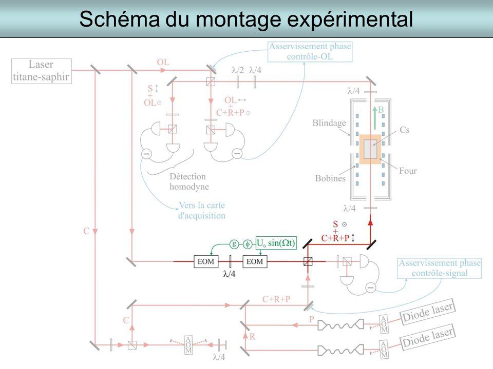 Schéma du montage expérimental