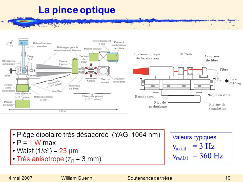 La pince optique naxial = 3 Hz nradial = 360 Hz