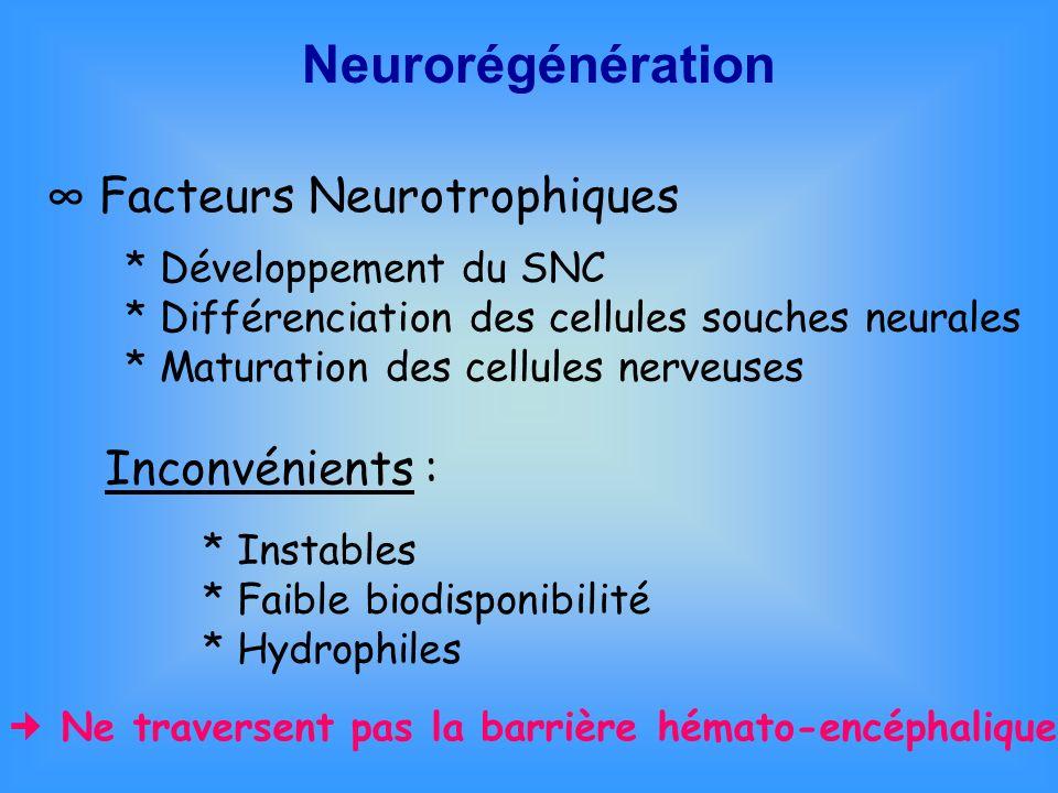 Neurorégénération ∞ Facteurs Neurotrophiques Inconvénients :
