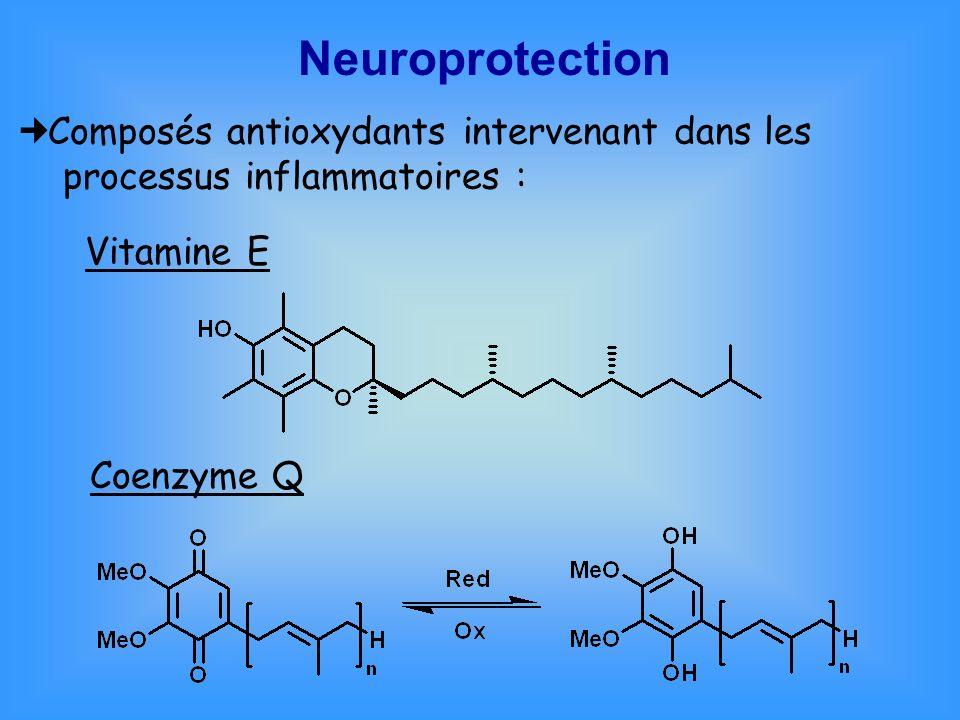 Neuroprotection Composés antioxydants intervenant dans les