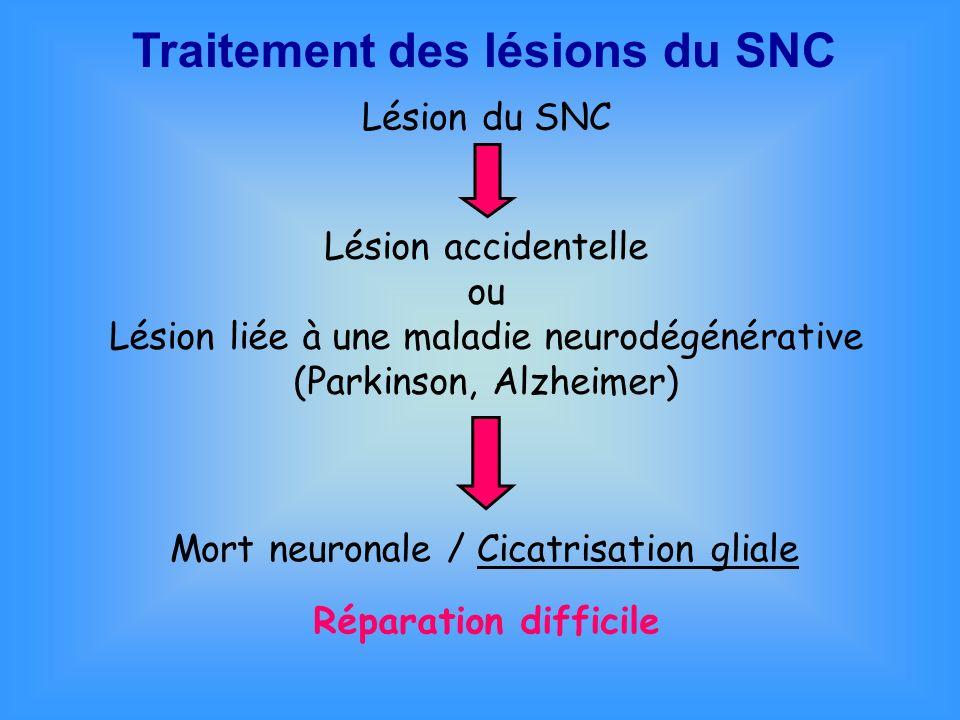 Traitement des lésions du SNC