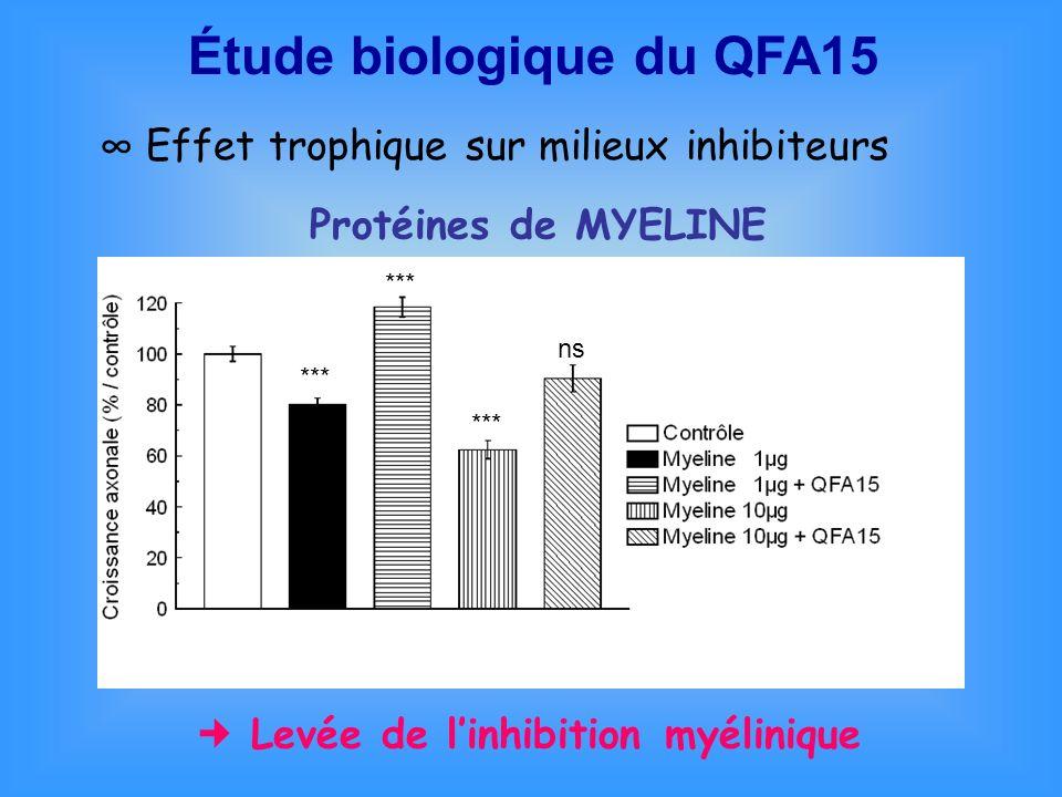 Étude biologique du QFA15