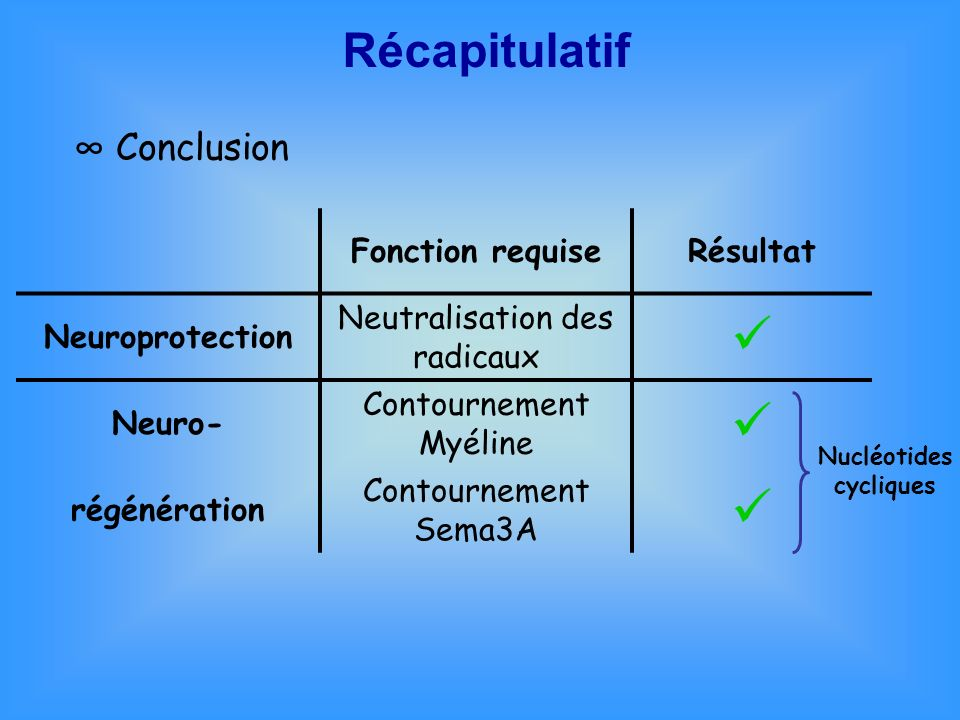  Récapitulatif ∞ Conclusion Fonction requise Résultat Neuroprotection