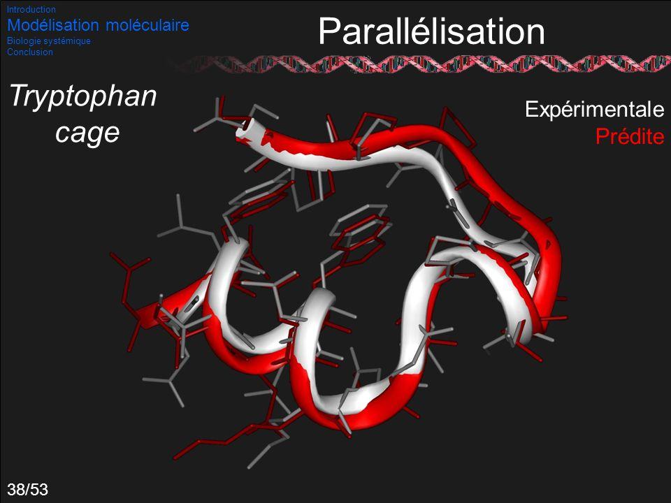 Parallélisation Tryptophan cage Expérimentale Prédite