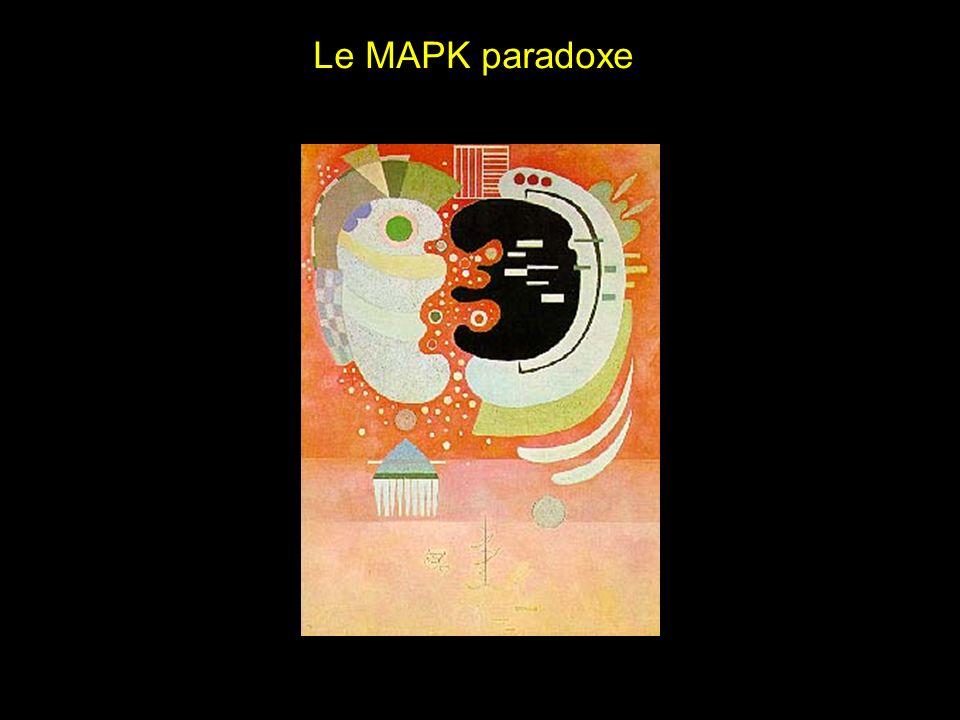 Le MAPK paradoxe