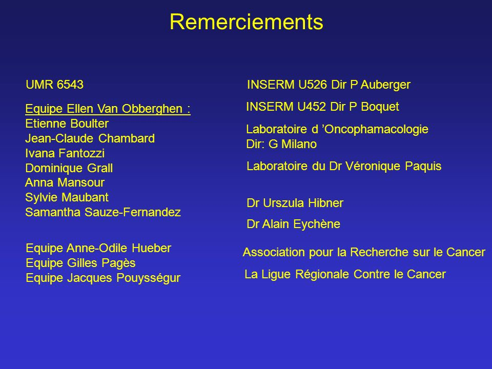 Remerciements UMR 6543 INSERM U526 Dir P Auberger
