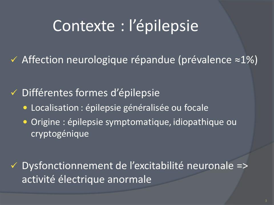 Contexte : l'épilepsie