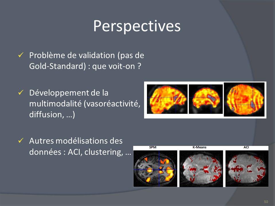 Perspectives Problème de validation (pas de Gold-Standard) : que voit-on Développement de la multimodalité (vasoréactivité, diffusion, …)