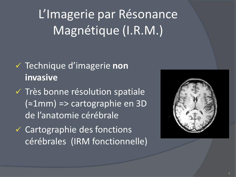 L'Imagerie par Résonance Magnétique (I.R.M.)