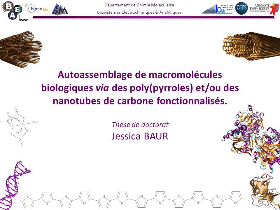 Autoassemblage de macromolécules