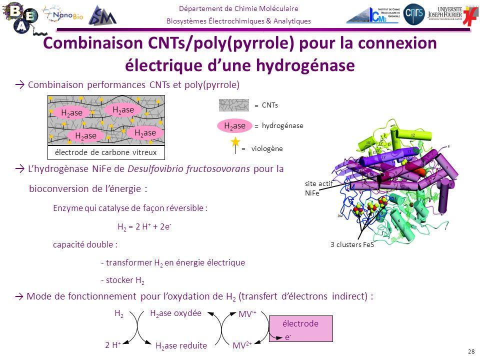 électrode de carbone vitreux