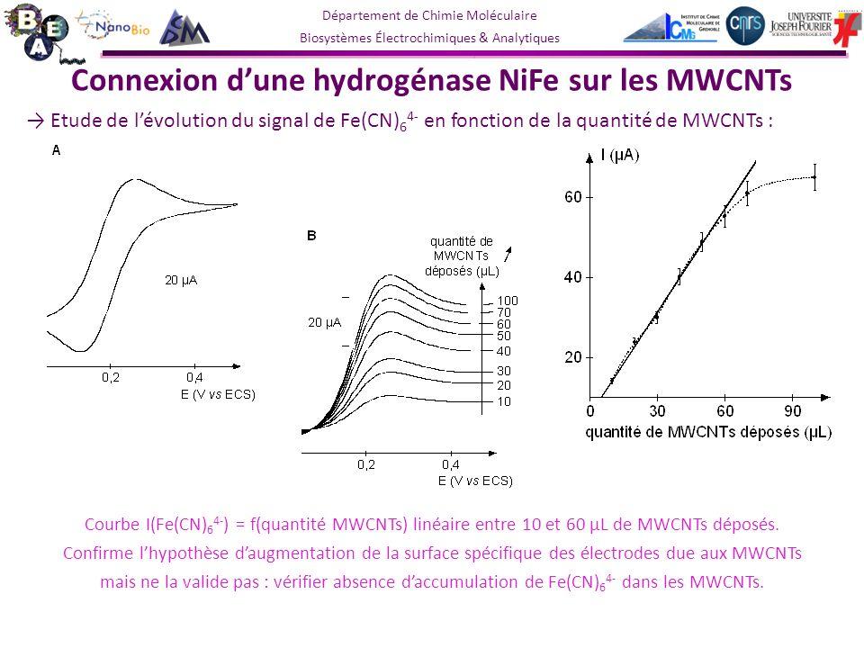 Connexion d'une hydrogénase NiFe sur les MWCNTs