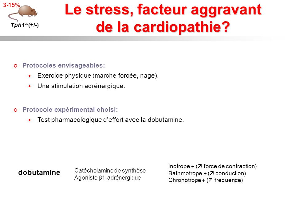 Le stress, facteur aggravant de la cardiopathie