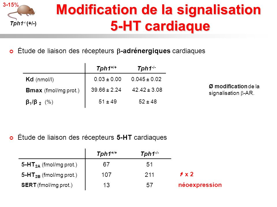 Modification de la signalisation 5-HT cardiaque