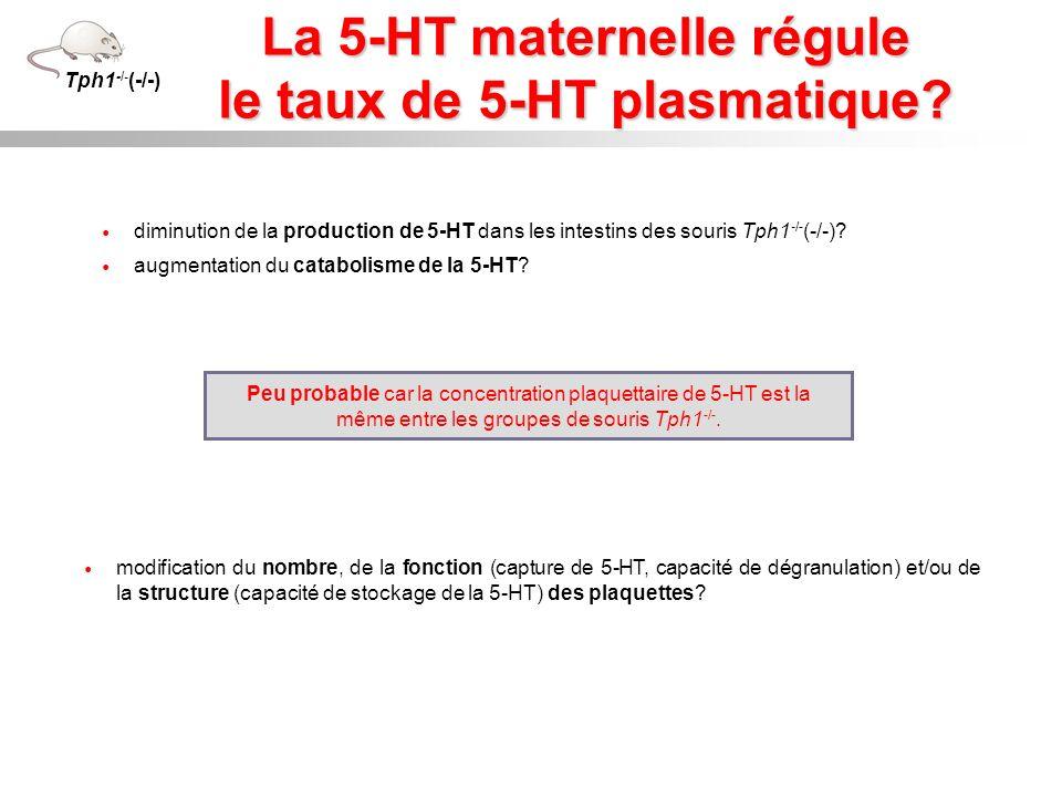La 5-HT maternelle régule le taux de 5-HT plasmatique