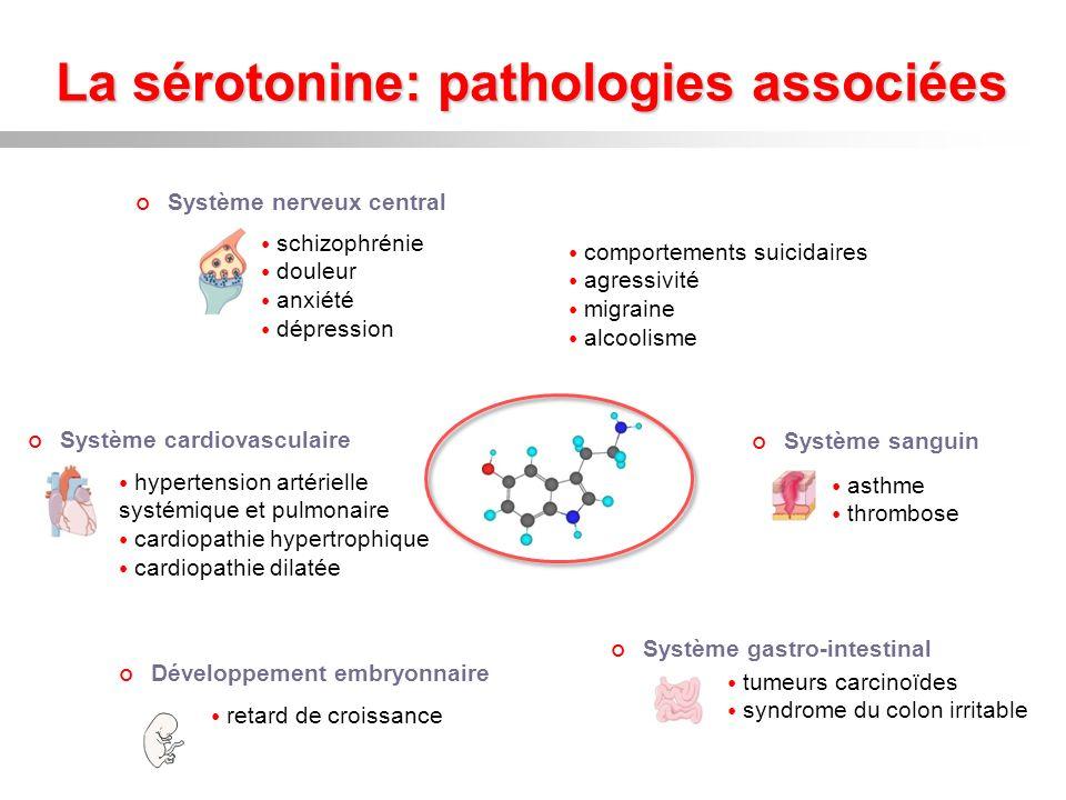 La sérotonine: pathologies associées