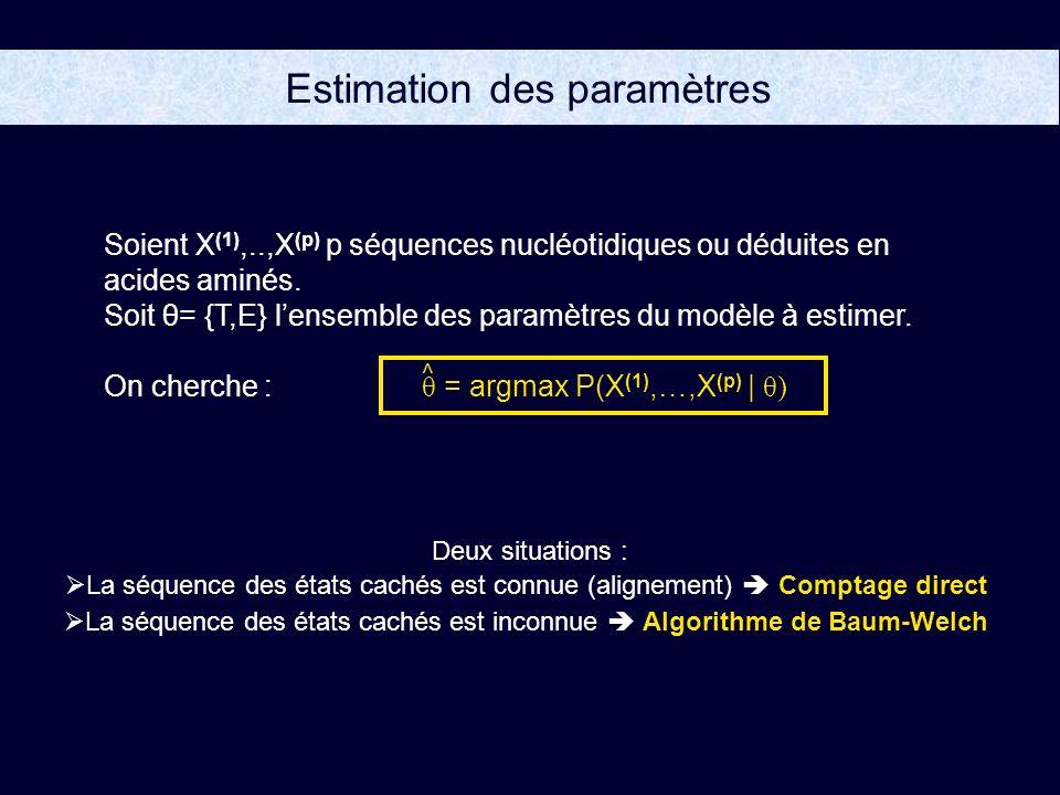 Estimation des paramètres