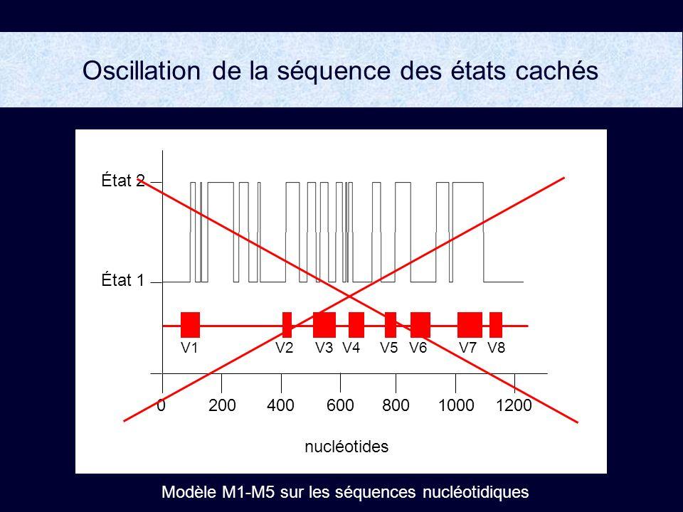 Oscillation de la séquence des états cachés