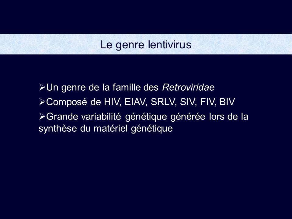 Le genre lentivirus Un genre de la famille des Retroviridae