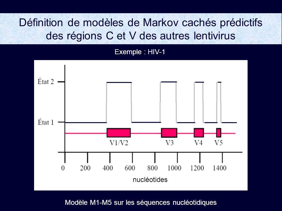 Modèle M1-M5 sur les séquences nucléotidiques