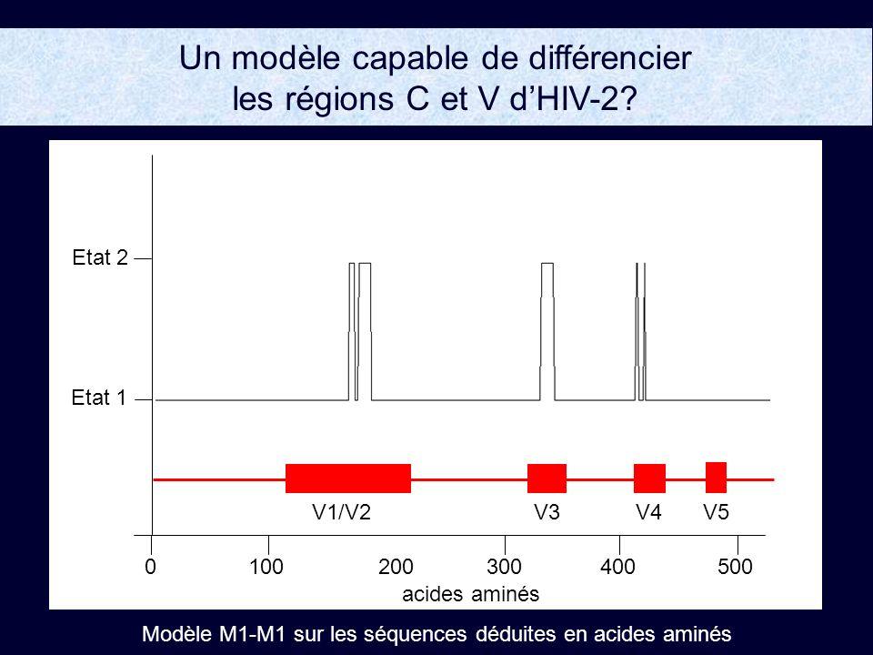Un modèle capable de différencier les régions C et V d'HIV-2