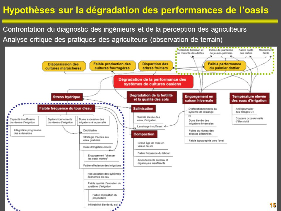 Hypothèses sur la dégradation des performances de l'oasis