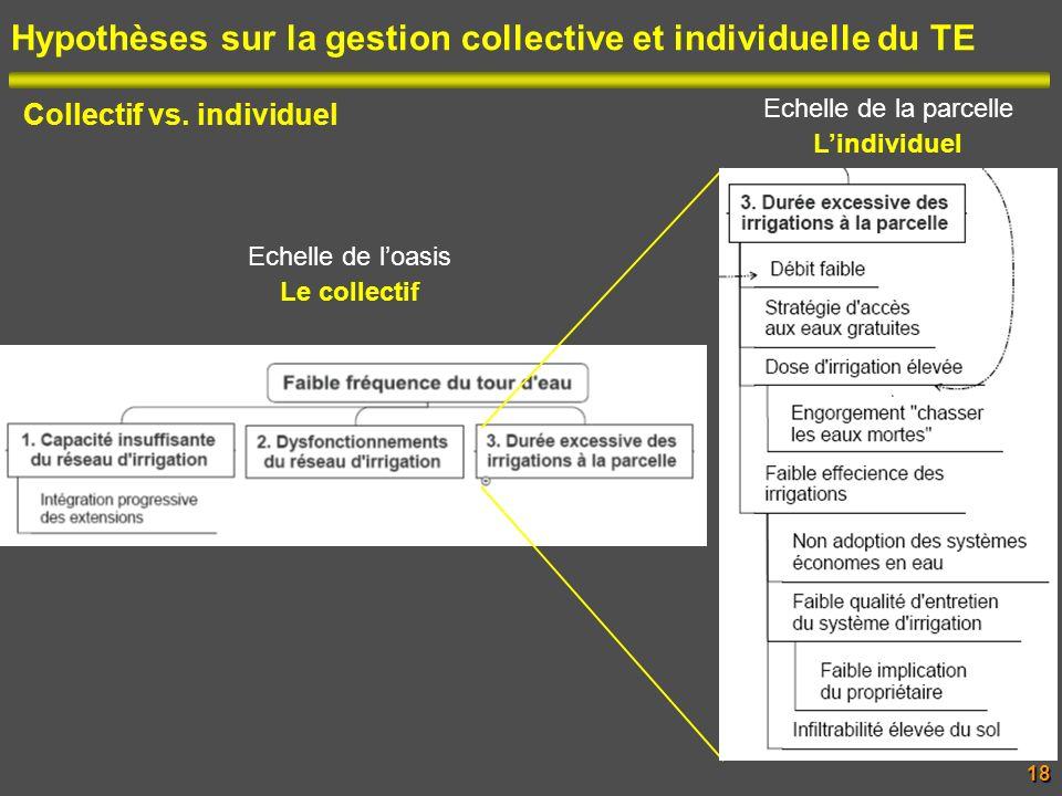 Hypothèses sur la gestion collective et individuelle du TE