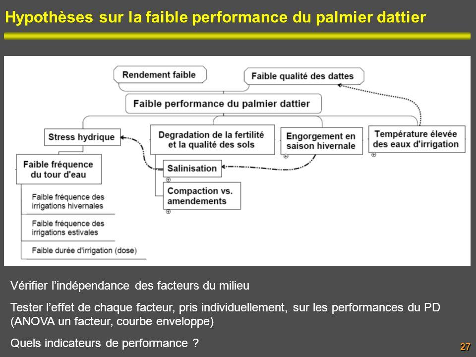 Hypothèses sur la faible performance du palmier dattier