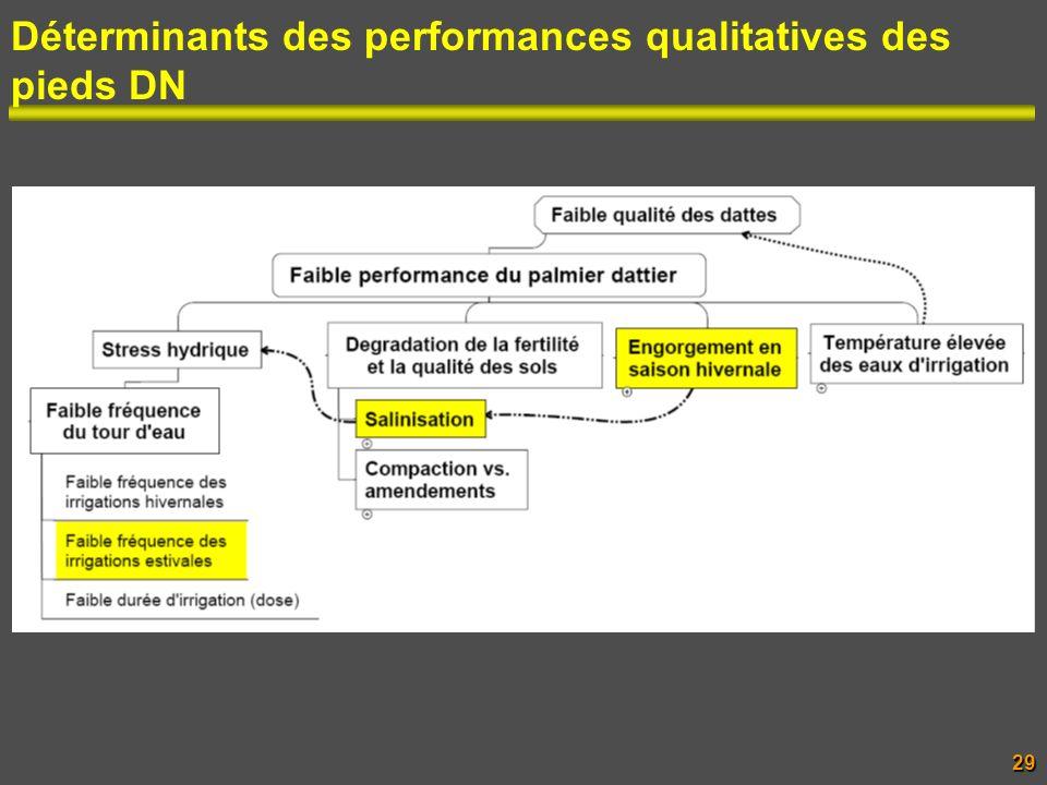 Déterminants des performances qualitatives des pieds DN