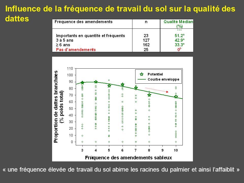 Influence de la fréquence de travail du sol sur la qualité des dattes