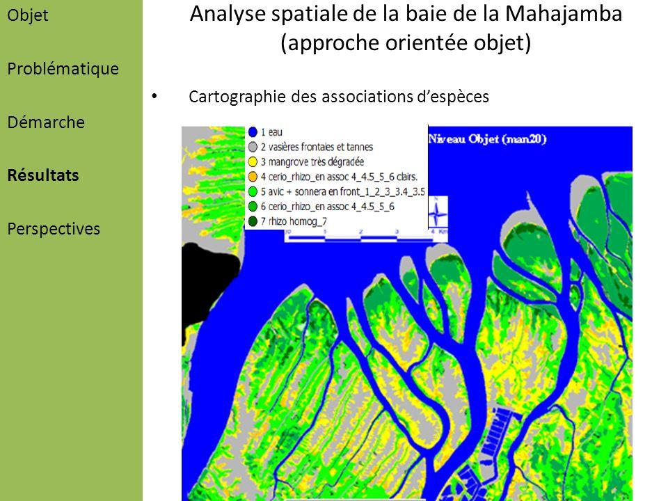 Analyse spatiale de la baie de la Mahajamba (approche orientée objet)