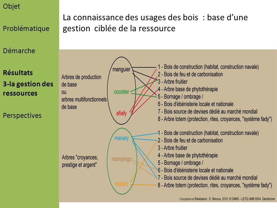 ObjetProblématique. Démarche. Résultats. 3-la gestion des ressources. Perspectives.